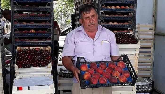 Lapseki'de kirazla yüzü gülen üretici, şeftaliden de umutlu (VİDEO)
