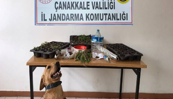 Gelibolu'da 'Roket'li uyuşturucu operasyonu: 2 gözaltı