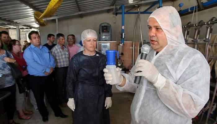 Kaliteli Süt Demonstrasyonuna Pazarköy 'de Devam Edildi