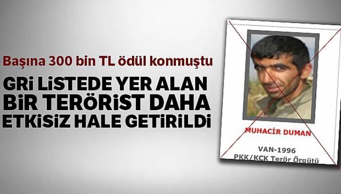 'Gri Liste'de yer alan bir terörist daha etkisiz hale getirildi