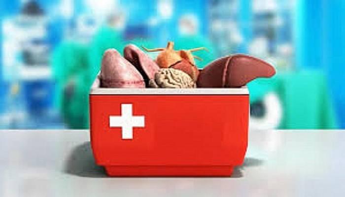 Türkiye'nin organ nakil cerrahları Çanakkale'de buluşuyor