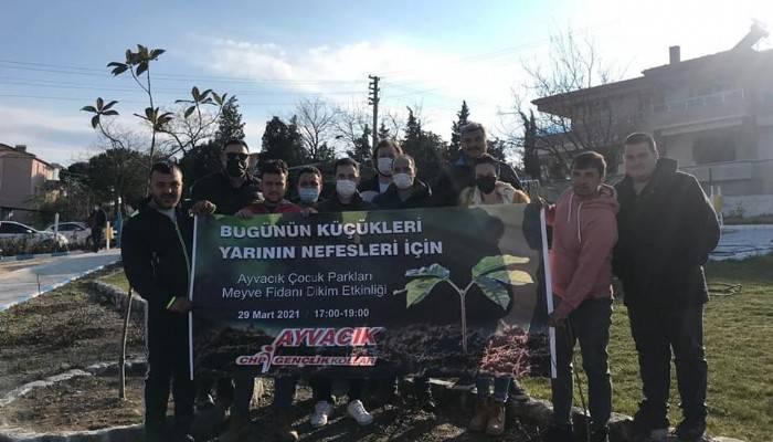 CHP'li Gençler Parklara Meyve Fidanı Dikti
