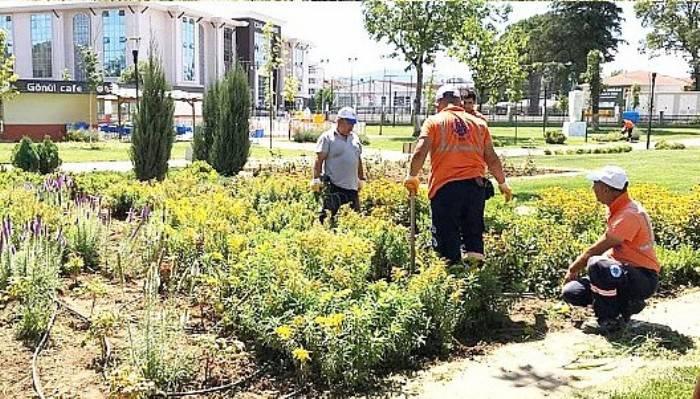 Park ve Bahçelerin Bakımı Yapılıyor