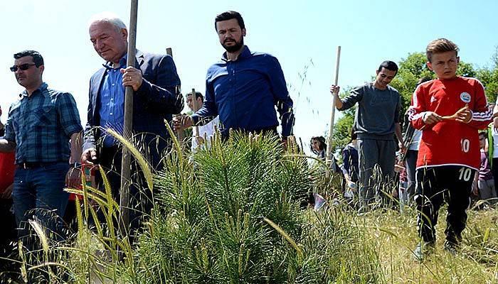 Lapseki'de Kadın Tepesine bin fidan (VİDEO)
