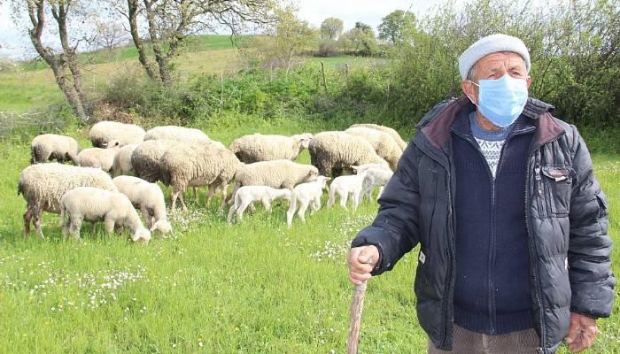 Korona virüse inat bu köyde tarım ve hayvancılık sürüyor (VİDEO)