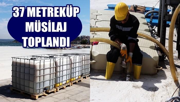 Çanakkale Boğazı'nda 3 günde 37 metreküp müsilaj toplandı (VİDEO)