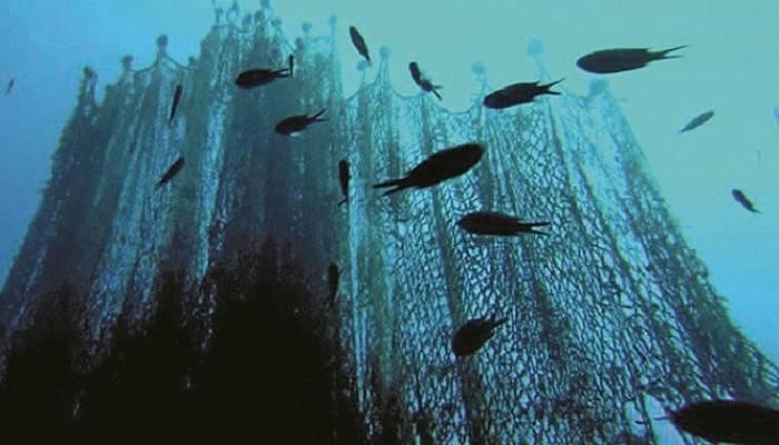 Balık Ölümlerine Neden Olan Ağlar Bir Bir Temizleniyor