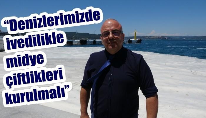 Prof. Dr. Yiğit: 'Canlı avladığınız ya da tezgahlardaki balıkları tüketebilirsiniz' (VİDEO)