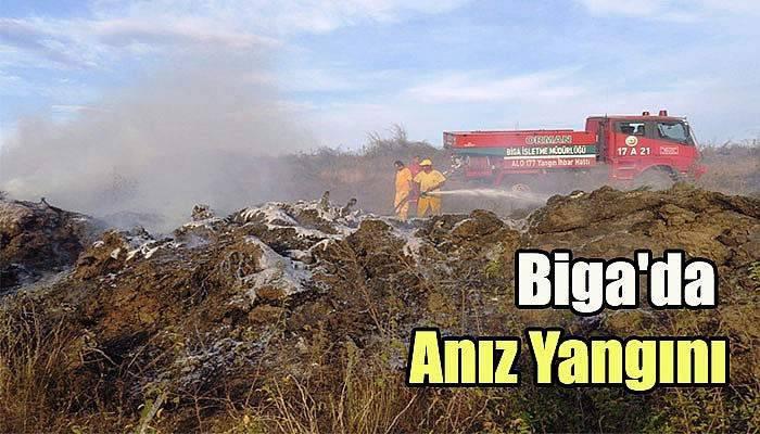 Biga'da Anız Yangını