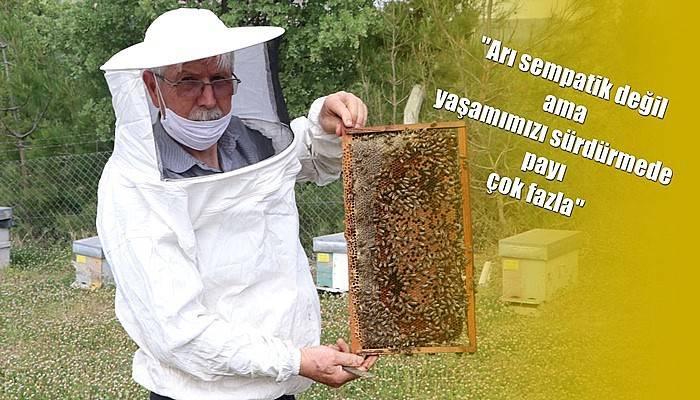 Çanakkale Arı Yetiştiricileri Birliği Başkanı İleri açıkladı! (VİDEO)