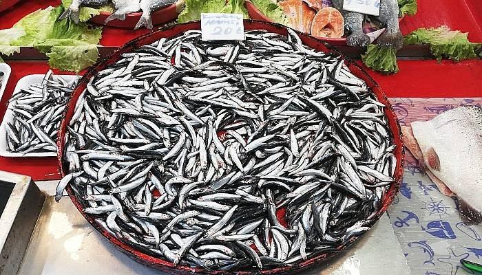 Balık pazarda daha ucuz