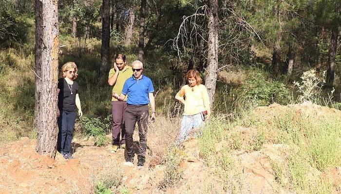 Endüstriyel ağaçlandırma sahasını incelediler