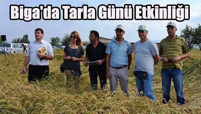 Biga'da Tarla Günü Etkinliği