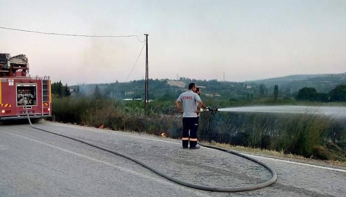 Lapseki'de anız yangını