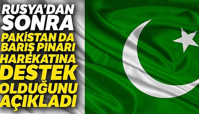 Pakistan'dan Barış Pınarı Harekatı'na destek