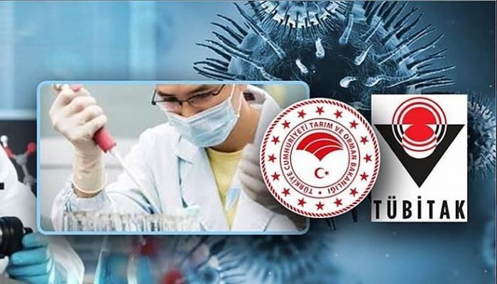 Pendik Veteriner Kontrol Enstitüsü aşı üretim çalışması yapacak