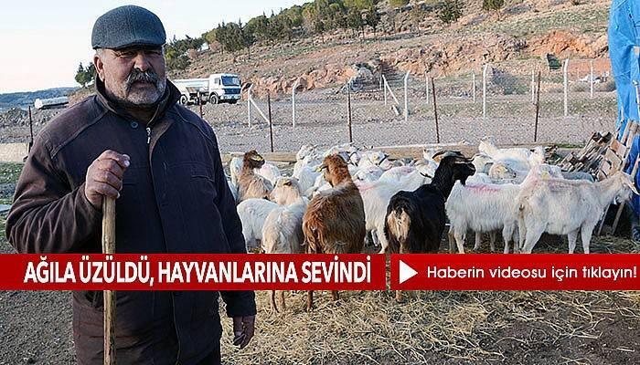 Depremde hayvanlarını kurtardığı için dua ediyor (VİDEO)