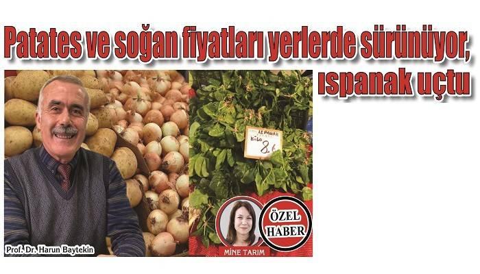 Patates ve soğan fiyatları yerlerde sürünüyor, ıspanak uçtu