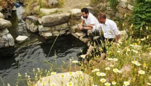 Jeotermal kaynak arama ruhsat sahası ihalesi