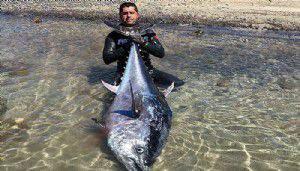 Dev balığı zıpkınla vurdu