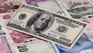 'Dövize yatırım artarken, Türk Lirası'na güven azalıyor'