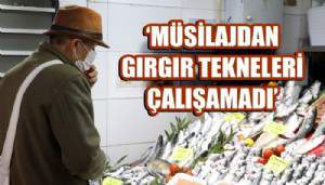 Çanakkale'de'müsilaj' balık fiyatlarını arttırdı