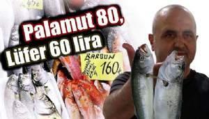 Palamut 80, Lüfer 60 lira