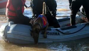 Baraj suyunda 'kadavra köpekleri' ile arama!