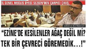 """""""EZİNE'DE KESİLENLER AĞAÇ DEĞİL Mİ? TEK BİR ÇEVRECİ GÖRMEDİK…!"""""""