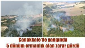 Çanakkale'de yangında 5 dönüm ormanlık alan zarar gördü